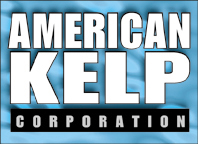 American Kelp